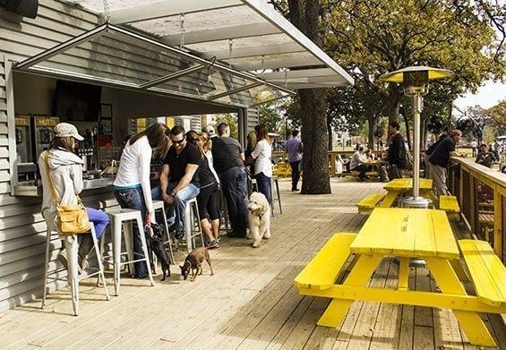Mutts Cantina Dallas - dog friendly bars Dallas