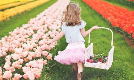 Pick Your Own Tulips At This North Texas Farm