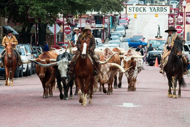 Ft Worth Stockyards Segway Tour