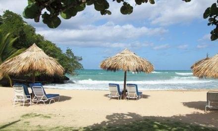 7 Tropical Mini-Retreats in DFW