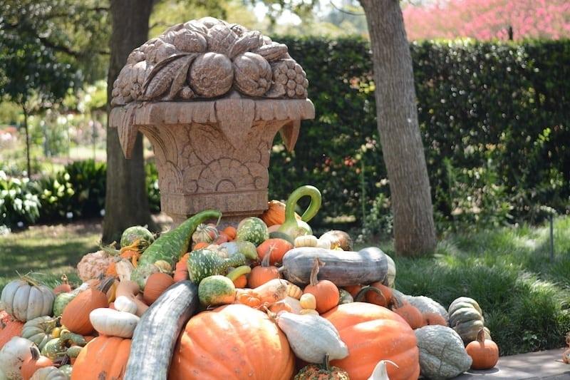 Dallas Arboretum in the Fall