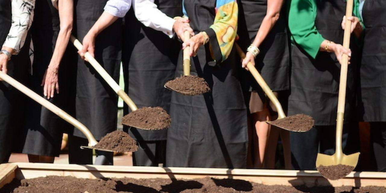 A Tasteful Place Dallas Arboretum Opens FarmtoTable Garden - Farm to table dallas