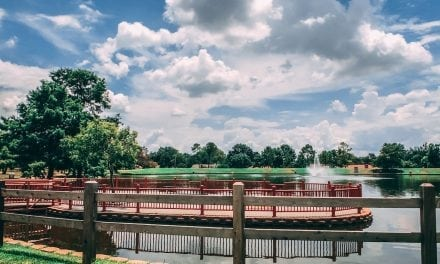 7 Local Parks That Will Make You Smile