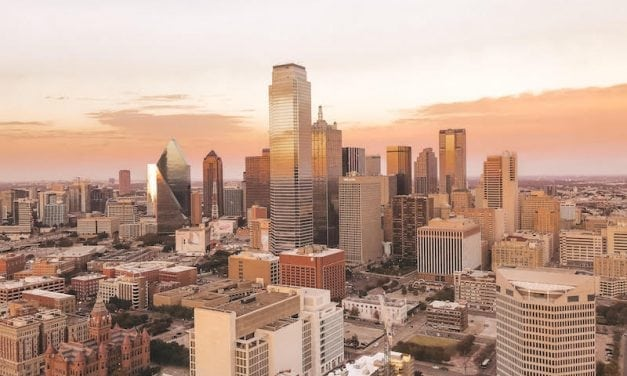 Weekend Whirlwind Aug. 17-19: NTX Fair and Rodeo, Balloon Fest, Slithery Lizards