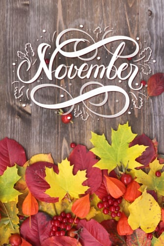 It's finally November! Time to turn clocks back and celebrate the weekend fun food, fun places and fun stuff #Dallas, #FortWorth and #Denton are famous for!